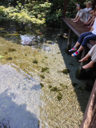 長崎 島原 鯉の泳ぐまち の 四明荘 庭園の湧水