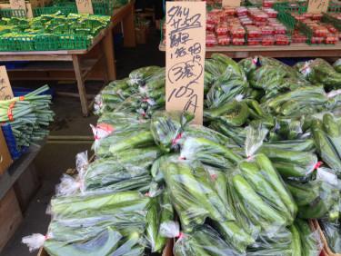 長崎 島原 きゅうりも安い