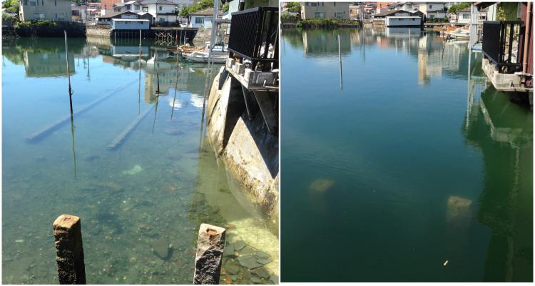 長崎 島原 干潮と満潮の違い