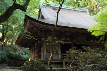 室生寺の金堂か本堂