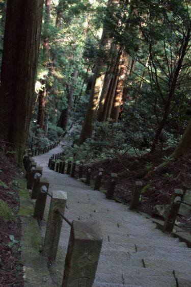 室生寺の奥の院から下る階段