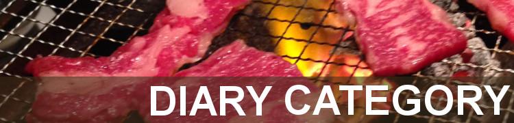diary_cat